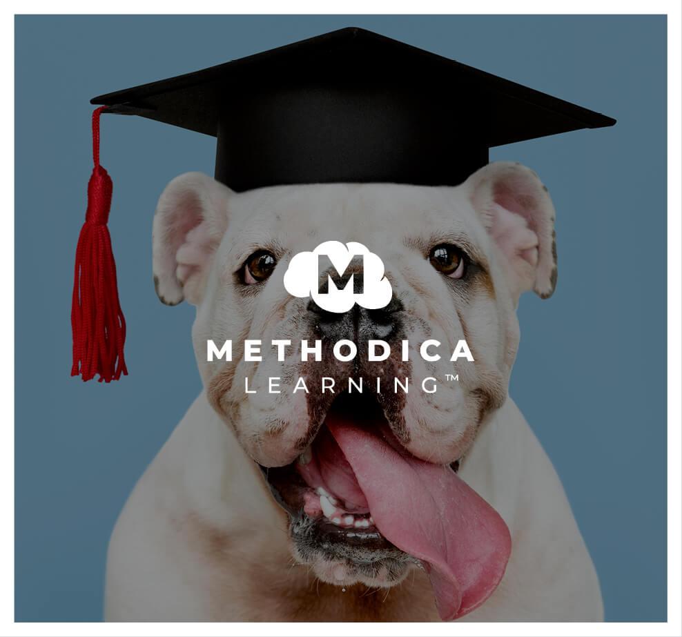 Methodica Learning